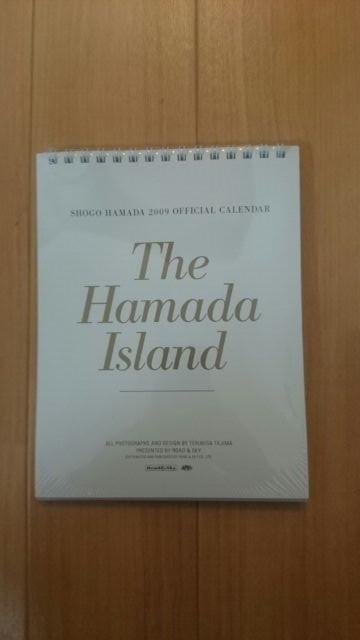浜田省吾 2009年カレンダー(卓上) ライブグッズの画像