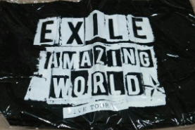 EXILE AMAZING WORLD ペイント トートバッグ