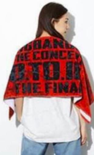 BIGBANG 0.TO.10 THE FINAL タオル RED ライブグッズの画像