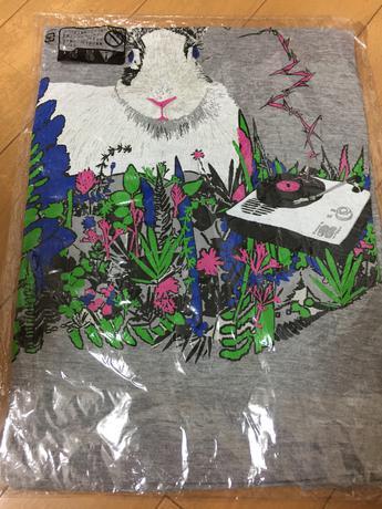 新品未開封 小沢健二 ひふみよ うさぎ Tシャツ 日光 グレー S ライブグッズの画像