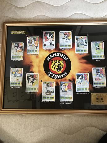 2003年優勝❗️阪神タイガース デイリースポーツの一面パネル グッズの画像