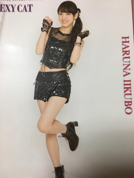 飯窪春菜 ピンナップポスター ピンポス モーニング娘。 コンサートグッズの画像
