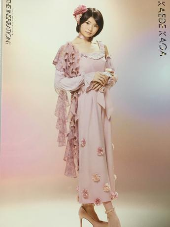 加賀楓 ピンナップポスター 引 ピンポス コンサートグッズの画像