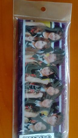 AKB48ビニール筆入れ新品送料 ライブ・総選挙グッズの画像