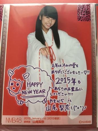 NMB48 2015年福袋 生写真 山尾梨奈 ライブグッズの画像