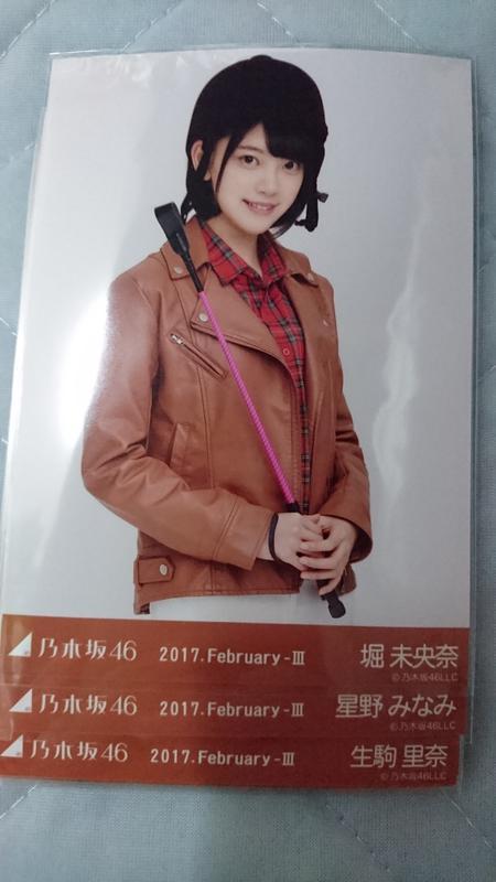 乃木坂46 2月 乗馬風 19枚セット ライブ・握手会グッズの画像
