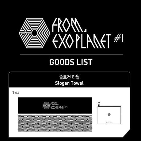 EXO (エックソ) スローガンタオル ライブグッズの画像