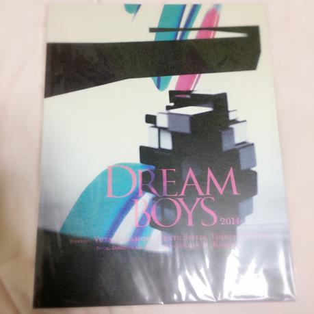 DREAM BOYS 2014 パンフレット コンサートグッズの画像