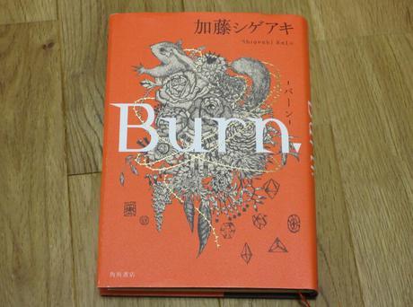 加藤シゲアキ著作 Burn コンサートグッズの画像