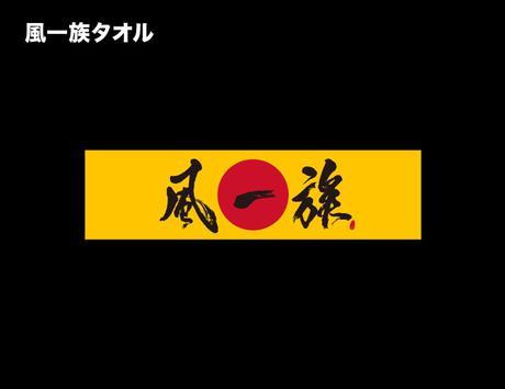 湘南乃風 10th 風一族タオル ライブグッズの画像