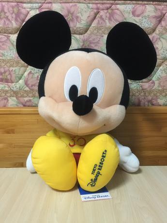 TDR30周年 アブーズバザール ミッキー ディズニーグッズの画像