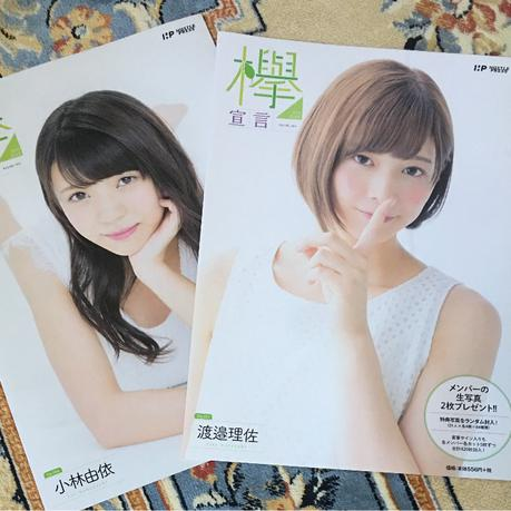 欅坂46 欅宣言 渡邉理佐&小林由依のセット 冊子のみ グッズの画像