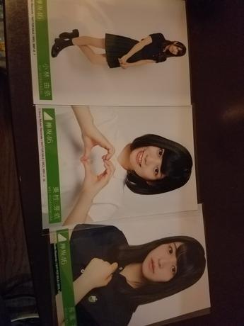 欅坂46 写真 3枚 ライブ・握手会グッズの画像