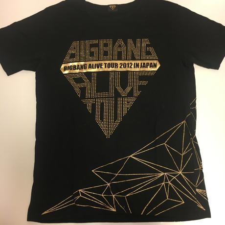 ◆アライブツアーのTシャツ◆ ライブグッズの画像