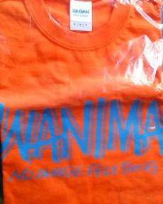 WANIMA PIZZA OF DEATH Tシャツ Mサイズ ライブグッズの画像